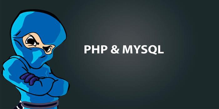 php+mysql位与(|), 位或(&)存储运算